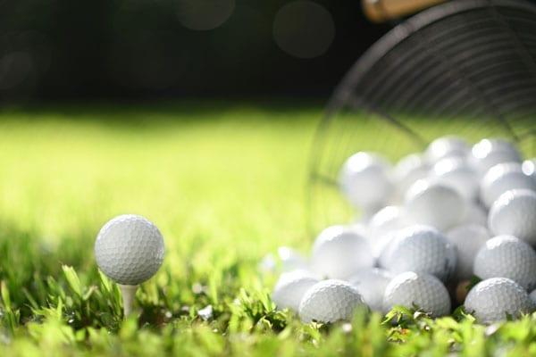 ゴルフ 練習 家