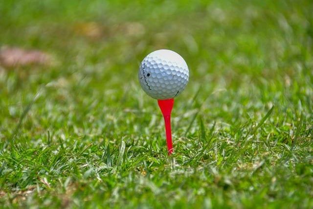 ゴルフ  利用税